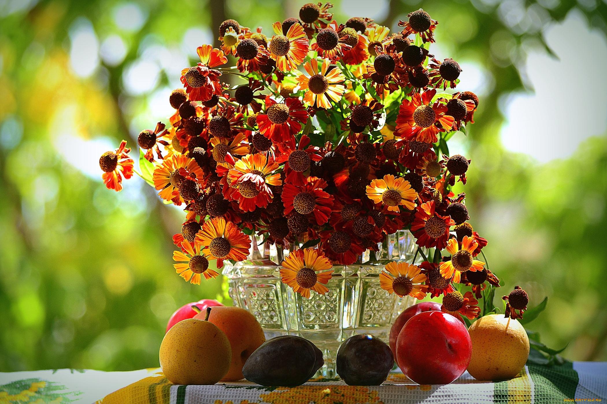 Фото цветы фрукты